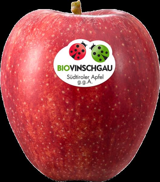 Gala Apfelkiste Bio - VI.P